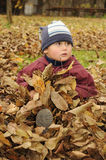 Little child sitting in leaves Stock Photo
