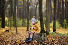Little child sitting on wooden stump and drinking hot cocoa during stroll in the forest at autumn day Royalty Free Stock Photography