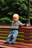 Little child stands on bench Stock Photo