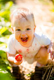 Little child with strawberry Stock Image