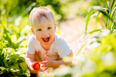 Little child with strawberry Royalty Free Stock Images