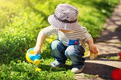 Little child walking near tulips on the flower bed in beautiful spring day Stock Photography