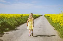 Little child walking in rural path in beautiful summer nature royalty free stock photography