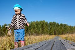 Little child walking wooden planks pathway passing through the swampland, copy space Stock Image