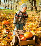 Little child with a wheelbarrow. Full of pumpkin Royalty Free Stock Image