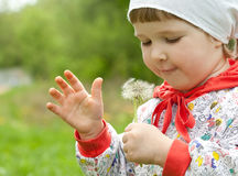 Little child with white dandelion Stock Images