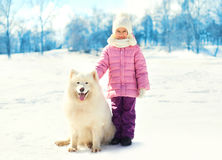 Little child with white Samoyed dog on snow in winter Royalty Free Stock Photo