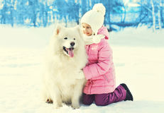 Little child with white Samoyed dog together on snow in winter Stock Photo