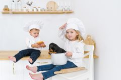Little children in cook`s hats playing in home kitchen with their puppy royalty free stock images