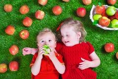 Little children eating apples stock images