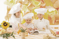 little children in the form of a chef Royalty Free Stock Photos