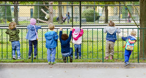 Little children hanging on a fence Royalty Free Stock Photo