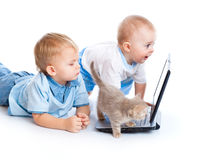 Little children, kitten, and laptop Royalty Free Stock Photo