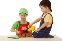 Little children plant seeds Royalty Free Stock Photo