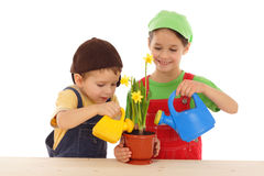 Little children watering for potted narcissus Royalty Free Stock Photography