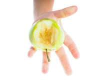 Little childs hand holding an unripe green apple Stock Images