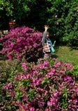 Pengzhou, China: Little Boy in Azalea Garden Royalty Free Stock Photography