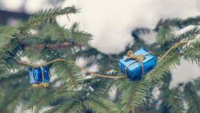 Little christmas gifts. On Christmas tree Royalty Free Stock Photos