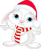 Little Christmas  rabbit pointing Stock Photography