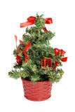 Little christmas tree Stock Photos