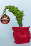 Little Christmas Tree Royalty Free Stock Images