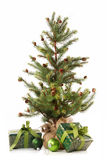 Little christmas tree with gifts on white Stock Images