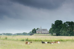 Little church in dutch landscape, Noordoostpolder near Emmeloord Stock Images