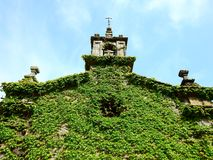 Little church with green ivy on its wall royalty free stock photos
