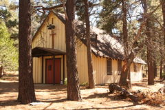 Little church in the trees. Little church in the pine trees in the mountains Royalty Free Stock Photo