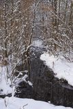 Little stream flowing through the winter forest royalty free stock photos