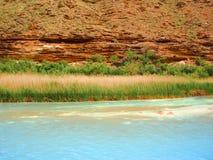 Little Colorado River Landscape Royalty Free Stock Photos