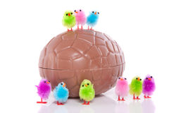Little colorful easter chicks with egg Stock Photography