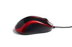 Little Computer mouse black and red Stock Image