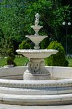 Fountain in a city park on a background of trees. stock photography