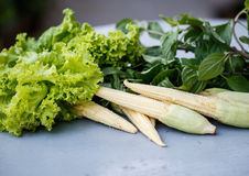 Little corn, lettuce and greens Royalty Free Stock Photography