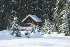 Free Little Cottage In The Forest Stock Photo - 441310
