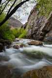 Little Cotton Wood River with Cliff Stock Photo