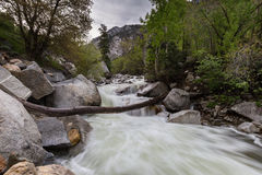 Little Cotton Wood River. This nature photography of the Little Cotton Wood River in Utah contains the river and the natural surroundings associated with the Stock Image