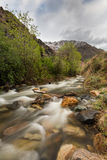 Little Cottonwood River and forest. This nature photography of the Little Cotton Wood River in Utah contains the river and the natural surroundings associated Stock Photo