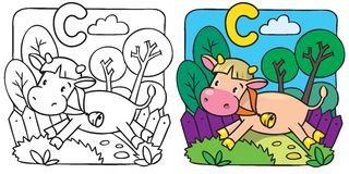 Little cow or calf coloring book. Alphabet C. Coloring book of little funny cow or calf running along the path. Alphabet C Stock Images
