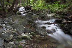 Little creek. Flowing water through the forest, Limekiln State Park California Stock Photography
