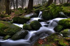 Little creek in Bavaria Stock Photo