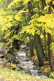 Little Creek. A little creek in Southern Quebec stock photography
