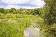 Little creek in Springtime, Pfefferfliess. Stock Image