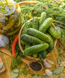 Little Cucumbers - Gherkins Royalty Free Stock Images
