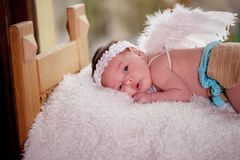 Little cupid with wings Stock Photography