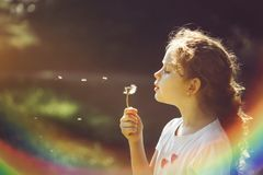Little curly girl blowing dandelion. Royalty Free Stock Photos