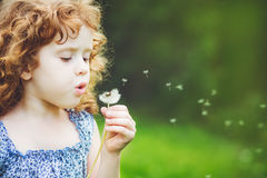 Little curly girl blowing dandelion Royalty Free Stock Photos