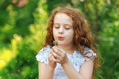 Curly girl blowing dandelion. Little curly girl blowing dandelion in spring park Royalty Free Stock Images