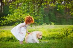 LIttle curly girl playing with big dog in summet day on nature background Stock Photos